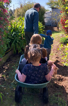 Emily's two daughters aged four and seven, and their four year old female cousin in a green garden cart pulled by their two year old boy cousin and his dad. They're exploring their great-nana's garden before the property is sold. The sun is out and flowers are in bloom