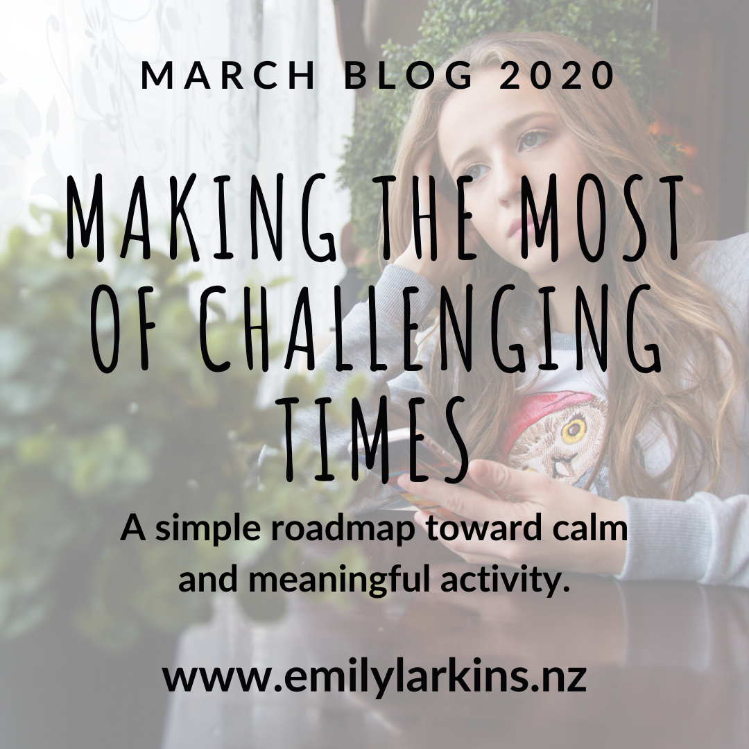 Instagram image for Emily Larkins's March blog post, text reading Making the most of Challenging Times. Background image worried young lady.