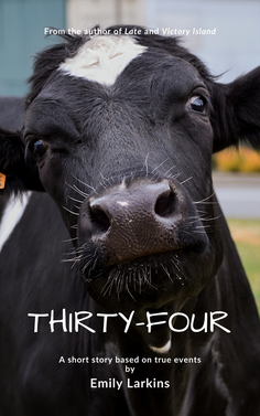 PictureCover Art for Thirty-Four by Emily Larkins featuring a fresian cow with a white heart in the centre of her forehead.